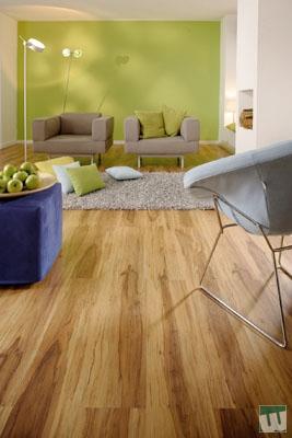 laminat mayer parkett fu bodentechnik. Black Bedroom Furniture Sets. Home Design Ideas